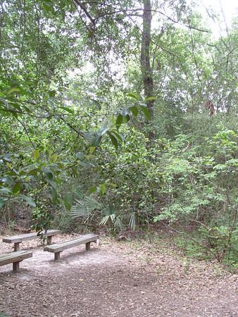 Edith L Moore Nature Sanctuary: