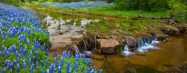 Bluebonnets and Short Waterfall