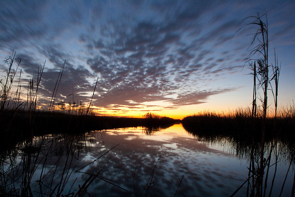 Anahuac National Wildlife Refuge, Texas
