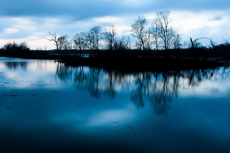 Elm Lake, Brazos Bend State Park