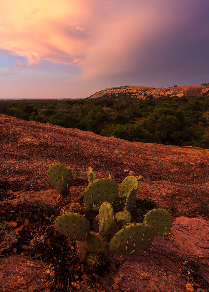 Prickly Pear and Little Rock