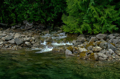 Small mountain stream in Pendrell Sound