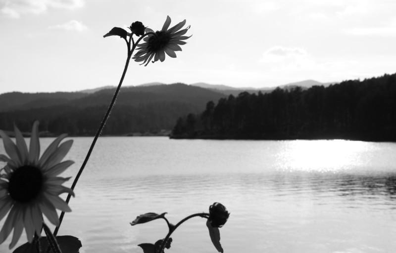 Mescalero Lake, Mescalero, NM