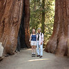 Mas and Janet visiting the Sherman Grove; Giant Forest, Sequoia National Park