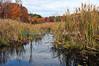 Creek (Palenville, NY- Sat 10/23/10)
