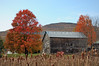 Rebirth of the old barn (Palenville, NY- Sat 10/23/10)