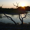 Sunset <br /> Sunset behind my grandpa's drying-up lake near Shiner, Texas.<br /> <br /> Photo Credit: Katey Huth