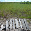 """The Makeshift """"Dam"""" <br /> It was used more than once before. You can't even see where the water is anymore."""
