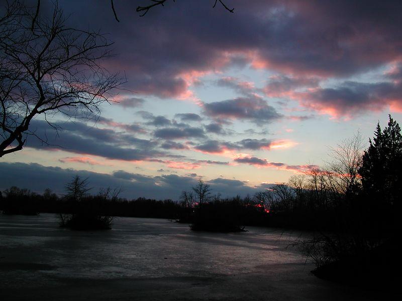 Sunset WLNP 4