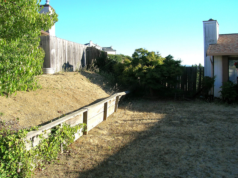 Before: The scourge of the neighborhood - dead grass, rotting retaining wall, collapsing fence, rat-infested ivy...UGH! I wouldn't want to live next door to me!
