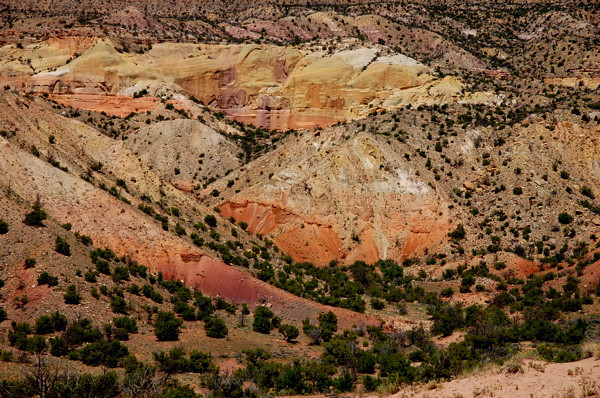 Ghost Ranch, NM (Photo by Rich Schaaff)