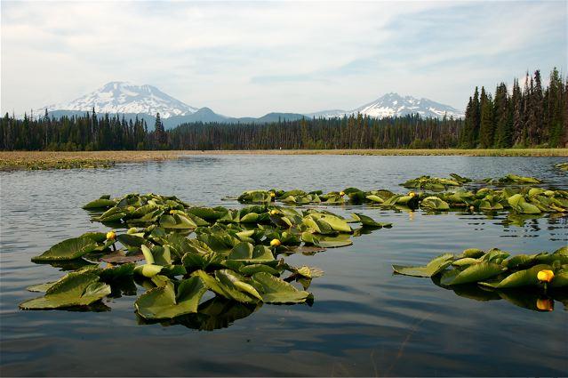 Hosmer Lake