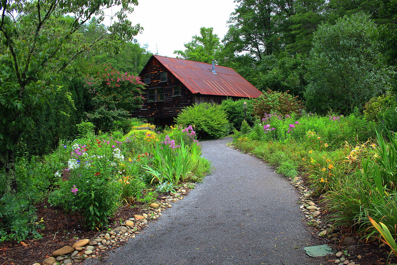 Primrose path at the Lily Barn