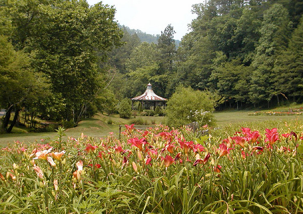 Many hued lilies and the gazebo in the distance.<br /> The Lily Barn in Townsend, TN 6/16/07