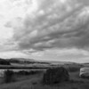 Montana, 2011
