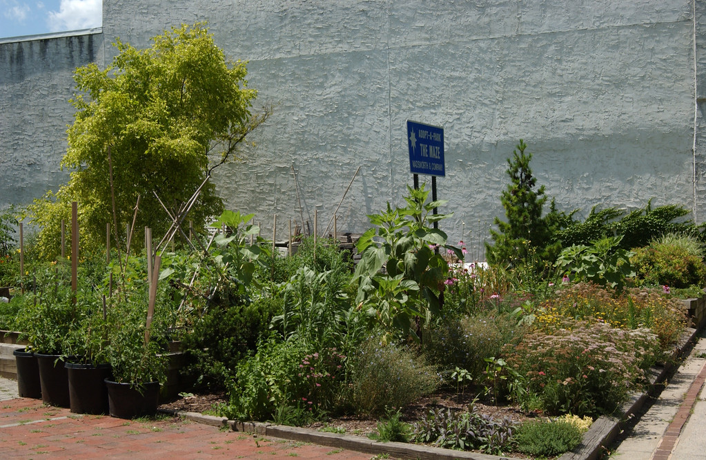 Side view of the Maze Garden