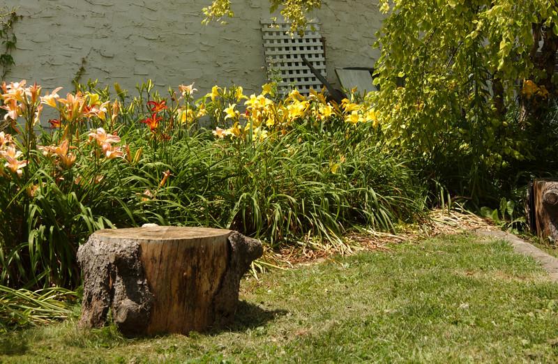 Peaceful spot at edge of Maze Garden