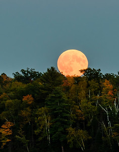 Autumn and the Super Moon