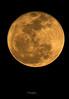 Full Moon 2-18-11