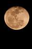Moon Phase: Waning Gibbous 2-19-11