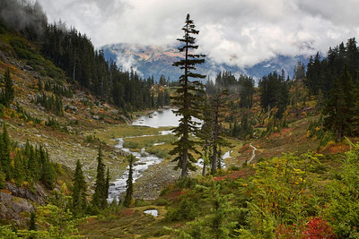 Heather Meadow- Mt Baker Nat'l Forest- Washington State
