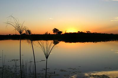 Sunset 1,  Okanvango, Delta Botswana