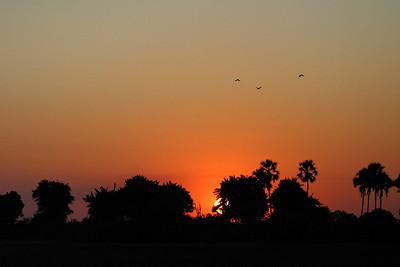 Sunset 2, Okanvango Delta, Botswana