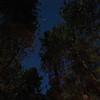 Night Sky, Metolius River, Central Oregon