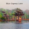 Blue Cypress Lake :
