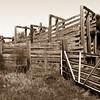 Old Livestock Chute