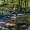 Cedar Creek in Petit John State Park, AR