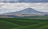 20130516-_MG_9532_Steptoe Butte in Spring