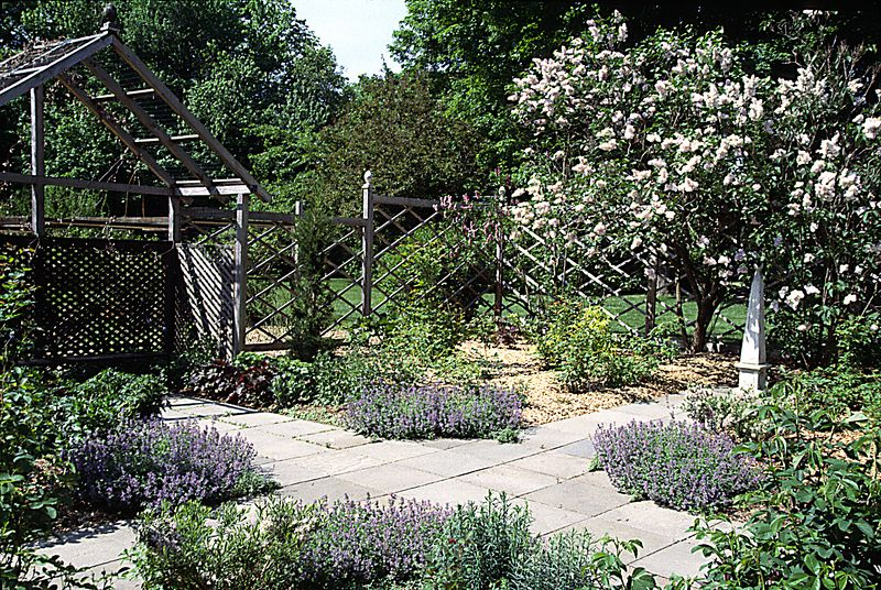 The Secret garden, still in early season, looking southwest with lilacs in bloom and nepeta at the four corners where the garden quadrants meet.