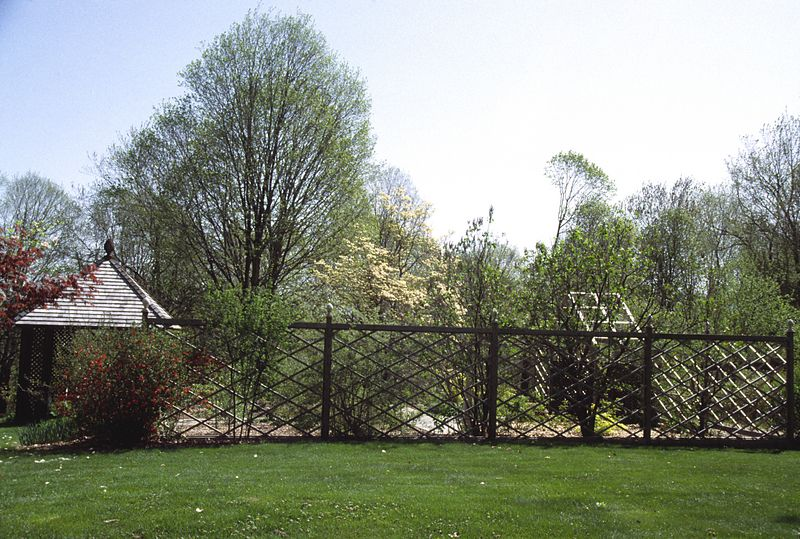The garden from the west showing the summerhouse, quince bush, and the old dogwood to the east.