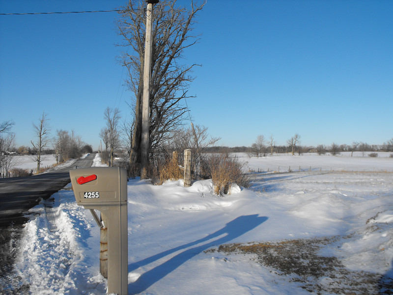 Feb. 2011 Ontario sky!