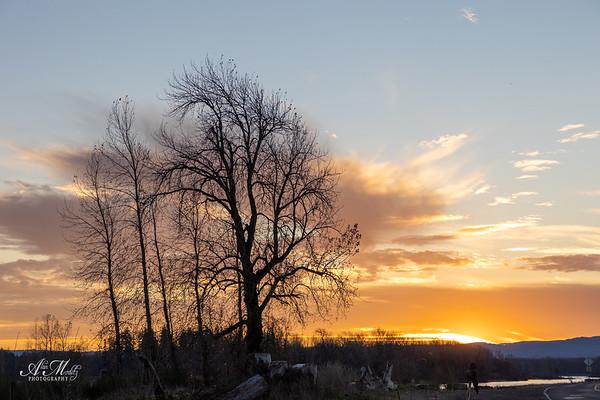 December Sunset