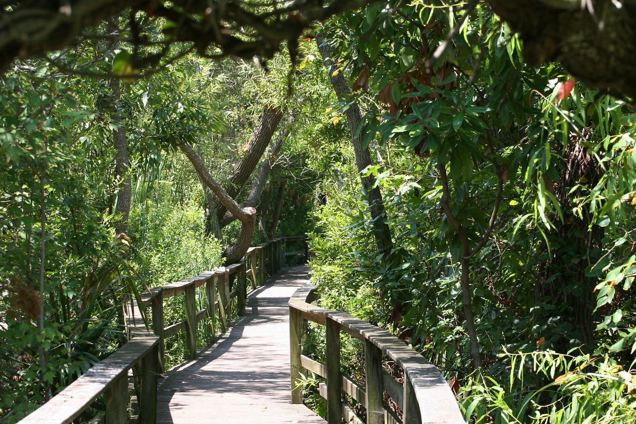 Sea Pines Forest Preserve at Hilton Head, SC