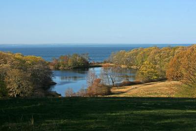 Fresh water pond at Caumsett State Park
