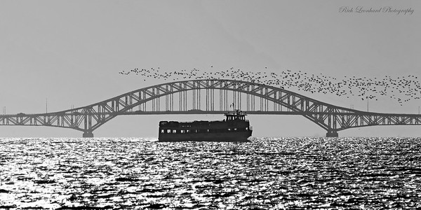 Ferryboat in front of Robert Moses Bridge with Geese.