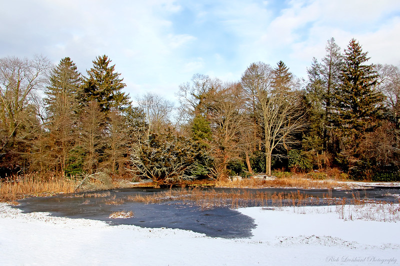 Frozen pond at Chelsea Center.