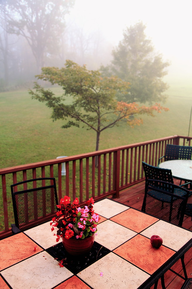 Looking out over our deck on a foggy fall morning.