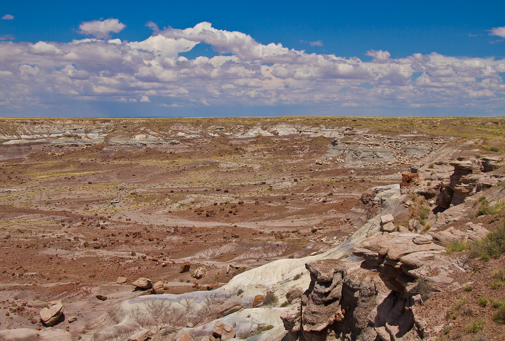 Littered all around the valley here are the remains of trunks of petrified wood.  Petrified Forest National Park, AZ