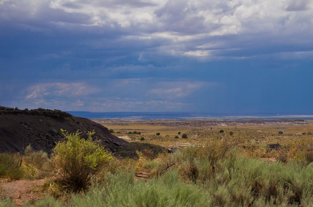 Storms on the desert, way south near Snowflake, AZ.  Petrified Forest National Park, AZ