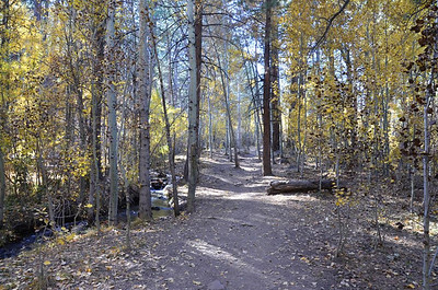 Thomas Creek Trail - October 25, 2013