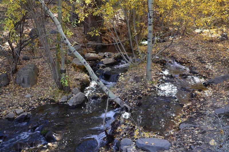 Thomas Creek - October 25, 2013