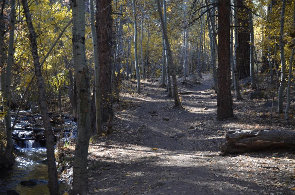 Thomas Creek Trail - October 25, 2013