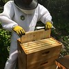 Hive #1 Box  E (second from top):  D1, D8, F2, F4, F6, F8, D3, C8