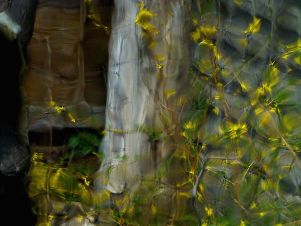 through a glass rippled