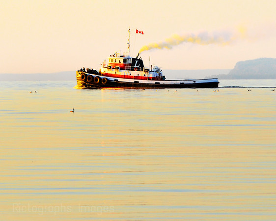 Tug Boat, Early Morning Ride, Rictographs Images 2018