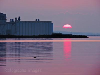Harbour Sunrise, Summer 2019